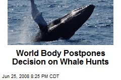 World Body Postpones Decision on Whale Hunts