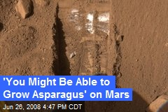'You Might Be Able to Grow Asparagus' on Mars