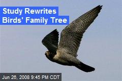 Study Rewrites Birds' Family Tree