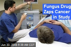 Fungus Drug Zaps Cancer in Study