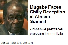 Mugabe Faces Chilly Reception at African Summit