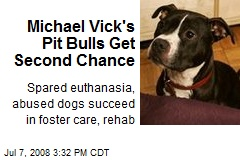 Michael Vick's Pit Bulls Get Second Chance