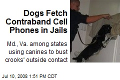 Dogs Fetch Contraband Cell Phones in Jails