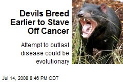 Devils Breed Earlier to Stave Off Cancer