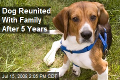 Dog Reunited With Family After 5 Years