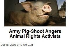Army Pig-Shoot Angers Animal Rights Activists