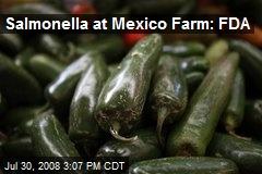 Salmonella at Mexico Farm: FDA