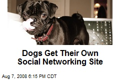 Dogs Get Their Own Social Networking Site