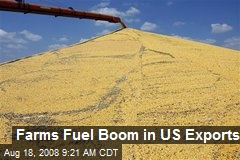 Farms Fuel Boom in US Exports
