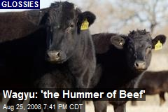 Wagyu: 'the Hummer of Beef'