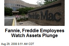 Fannie, Freddie Employees Watch Assets Plunge
