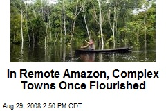 In Remote Amazon, Complex Towns Once Flourished