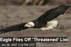 Eagle Flies Off 'Threatened' List