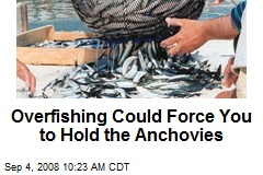 Overfishing Could Force You to Hold the Anchovies