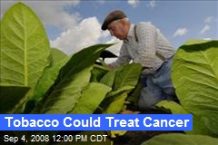 Tobacco Could Treat Cancer