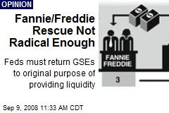 Fannie/Freddie Rescue Not Radical Enough