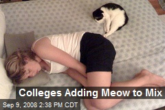 Colleges Adding Meow to Mix