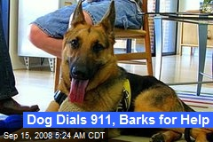 Dog Dials 911, Barks for Help