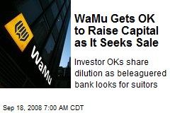 WaMu Gets OK to Raise Capital as It Seeks Sale