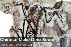 Chinese Make Dino Soup