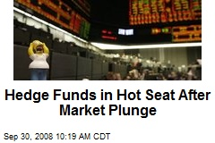 Hedge Funds in Hot Seat After Market Plunge