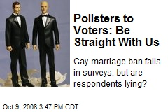 Pollsters to Voters: Be Straight With Us