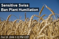 Sensitive Swiss Ban Plant Humiliation