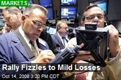 Rally Fizzles to Mild Losses