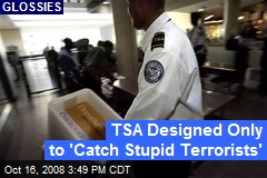 TSA Designed Only to 'Catch Stupid Terrorists'