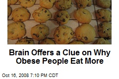 Brain Offers a Clue on Why Obese People Eat More