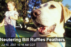 Neutering Bill Ruffles Feathers