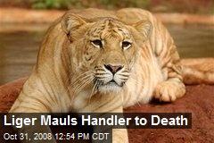 Liger Mauls Handler to Death