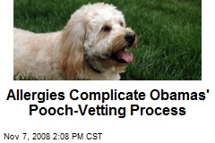 Allergies Complicate Obamas' Pooch-Vetting Process