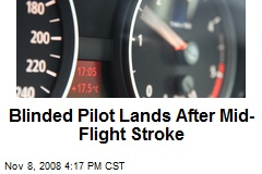 Blinded Pilot Lands After Mid-Flight Stroke