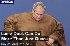 Lame Duck Can Do More Than Just Quack