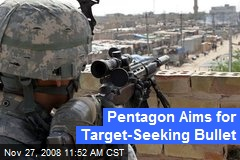 Pentagon Aims for Target-Seeking Bullet