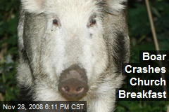 Boar Crashes Church Breakfast