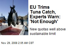 EU Trims Tuna Catch, Experts Warn: 'Not Enough'