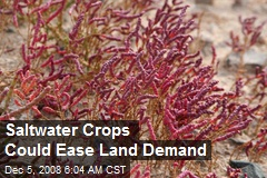 Saltwater Crops Could Ease Land Demand