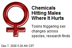 Chemicals Hitting Males Where It Hurts