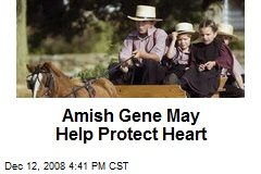 Amish Gene May Help Protect Heart