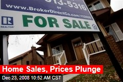Home Sales, Prices Plunge