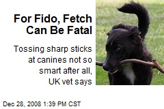 For Fido, Fetch Can Be Fatal