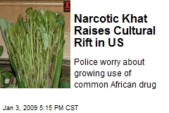 Narcotic Khat Raises Cultural Rift in US
