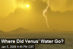 Where Did Venus' Water Go?