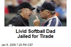 Livid Softball Dad Jailed for Tirade