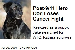 Post-9/11 Hero Dog Loses Cancer Fight