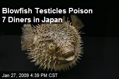 Blowfish Testicles Poison 7 Diners in Japan