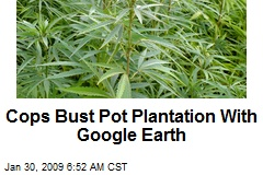 Cops Bust Pot Plantation With Google Earth