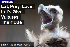 Eat, Prey, Love: Let's Give Vultures Their Due